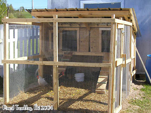 door chicken coop chicken house design and construction in kenya. Black Bedroom Furniture Sets. Home Design Ideas